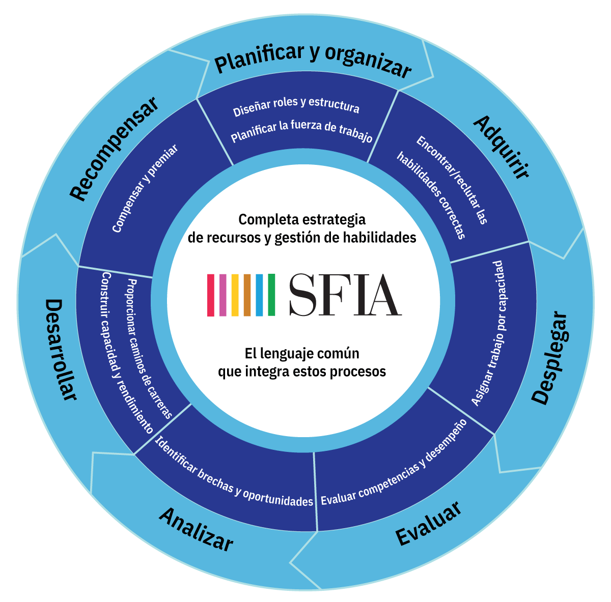 SFIA-Process-Wheel-04.es.png